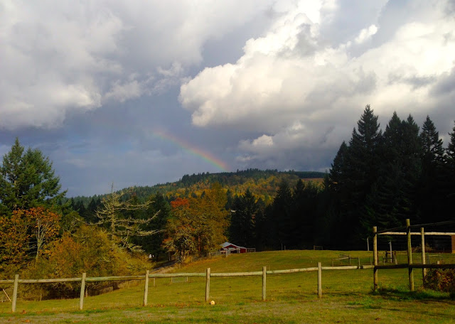 Giving Thanks (Reflections on Two Years on the Homestead)