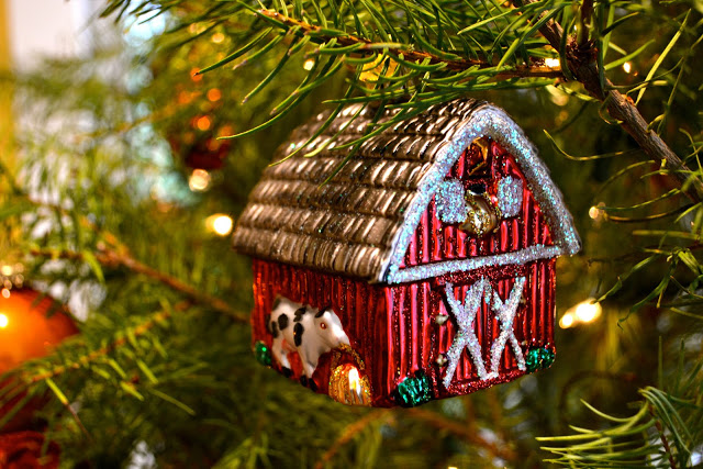A Country Christmas and Six-Months Home